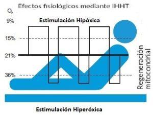 Efectos fisiológicos IHHT 3